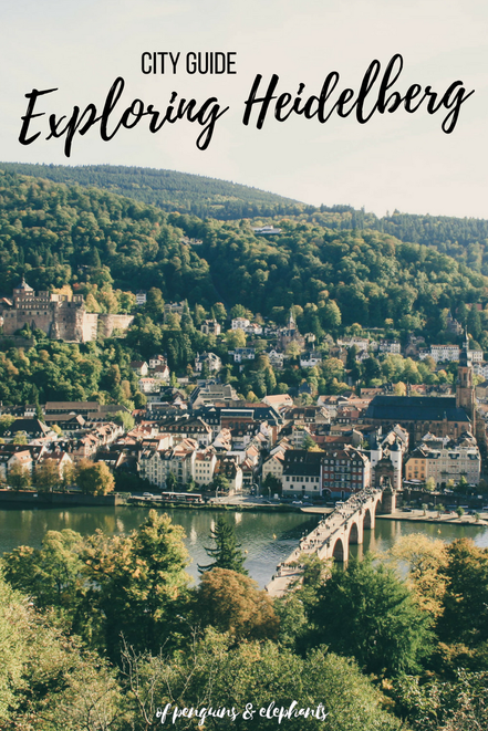 Heidelberg Germany ofpenguinsandelephants of penguins & elephants City Guide Exploring Heidelberg Pinterest