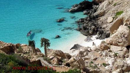 Cala a Illa Socotra, Iemen. Foto Y. Alwan.