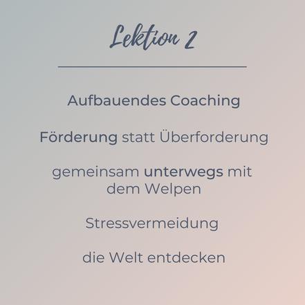Lektion 2 - aufbauendes Coaching