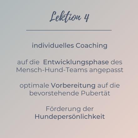 Lektion 4 - individuelles Coaching