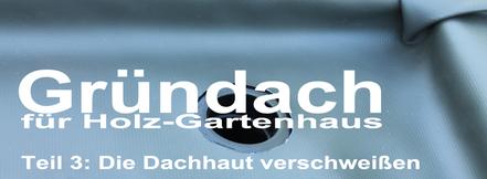 Hecken Praxistest, Langzeit Experiment Internet vs. Gärtnerei