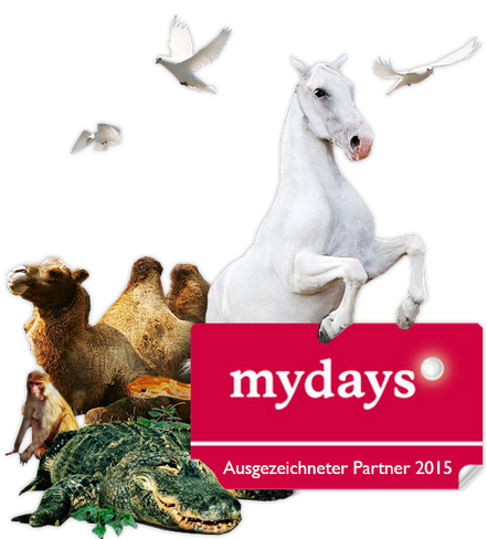 ausgezeichneter Partner 2015 bei mydays.de