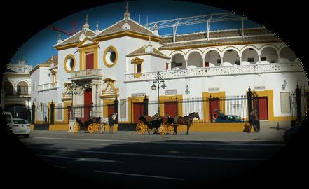 tour-seville.com: Sevilla y sus tradiciones, Semana Santa, Feria de Abril, Plaza de Toros.