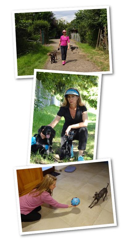 Susanne Achenbach - Mobile Hundetrainerin Heidelberg Mannheim und Umgebung