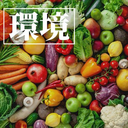 新鮮、野菜、産地、朝市野菜、地場野菜