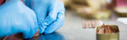 fabrica de anchoas en santoña