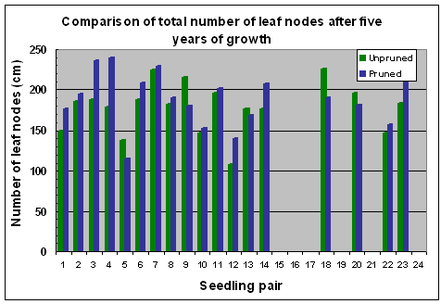 Fig. 19 Variation in numbers of leaf nodes after 5 years of growth
