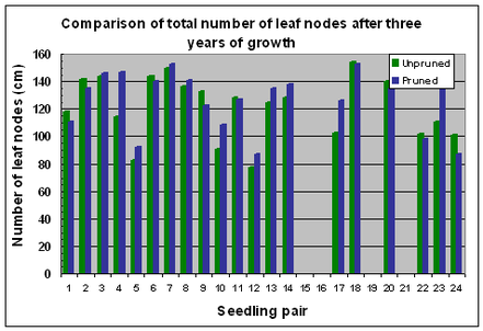 Fig. 11 Variation in numbers of leaf nodes after 3 years of growth