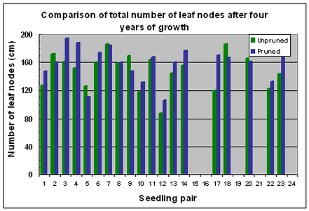 Fig. 15 Variation in numbers of leaf nodes after 4 years of growth