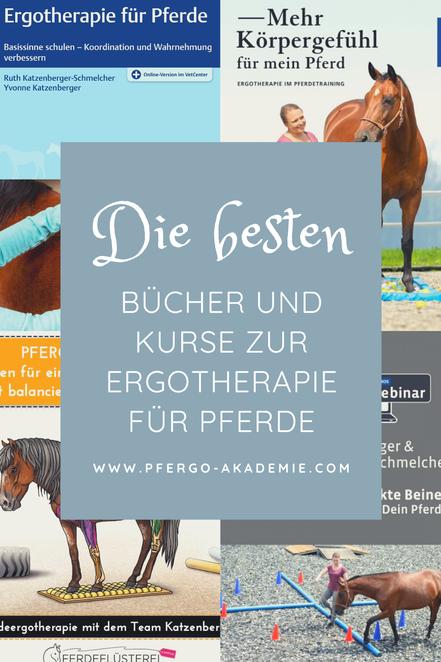 Wissen über die Ergotherapie für Pferde: Bücher und Kurse rund um sinnvolle Bodenarbeit mit Deinem Pferd.