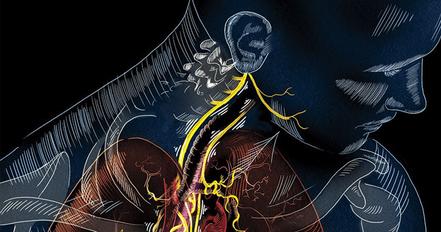 El Nervio Vago. Regeneración y sanación gracias a la Meditación