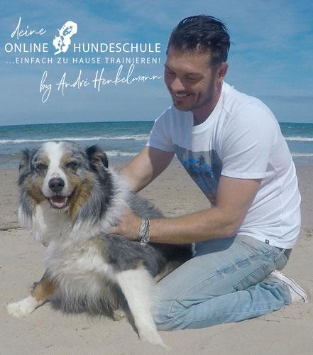 André Henkelmann - Zertifizierter Hundetrainer & Verhaltensberater - Gründer der Online Hundeschule