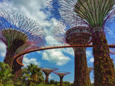 Singapur, Singapor, Backpacker, Super Trees, Marina Bay Sands, Zwei auf Achse, Backpacker, Reiseblog, Blog, Asien, Südostasien, Gardens by the Bay
