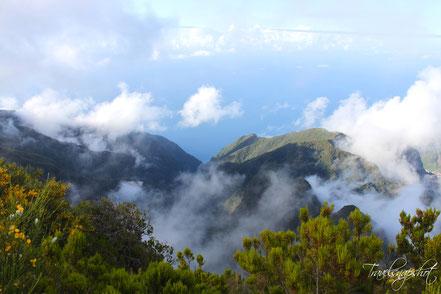 Pico Ruivo do Paúl da Serra