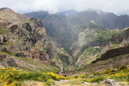 Pico Areeio