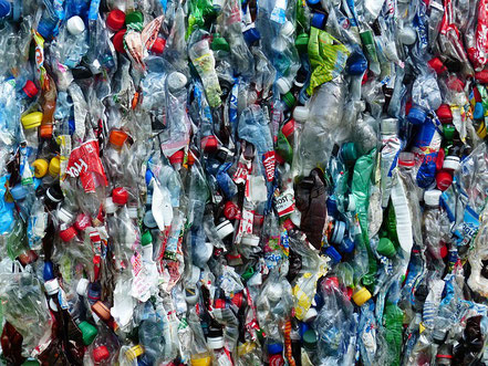 Kork ist nachhaltiger als Plastik