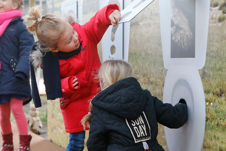 Dierenpark Amersfoort Poep en zoo
