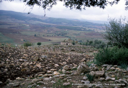 Henchir Douamis - Uchi Maius : Zaouia (marabout) de Sidi Salah - Proconsulaire