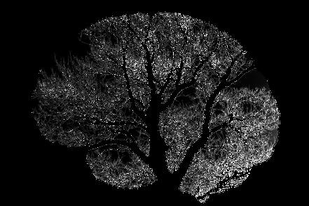 vague(s) magazine pureplayer, intuitif et évolutif : reprogrammer son cerveau avec l'hypnose