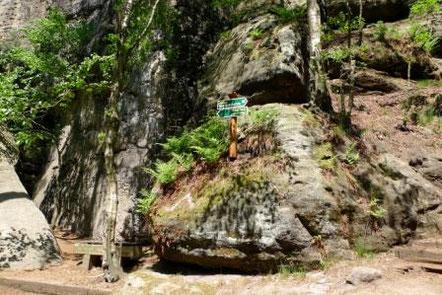 Blick auf die Weggabelung an der Steinbank am Gohrisch, Westaufstieg