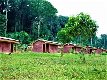 Campement Pygmée à Ngoyla