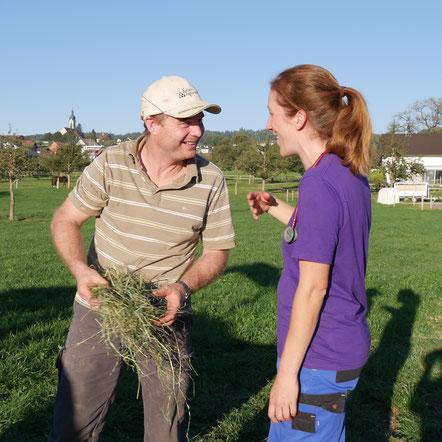 Individuelle Begleitung und Anamnese, Homöopathie für Nutztiere und Pferde