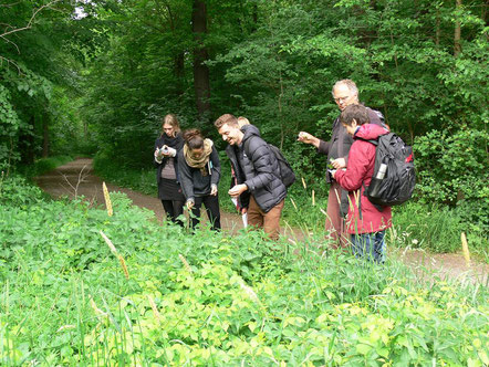 Wildkräuterwanderung im Leipziger Auenwald