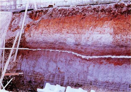 写真1-1 野川露頭の立川ローム層と泥炭層中のAT火山灰層(千葉達朗撮影) 露頭基部に立川礫層.