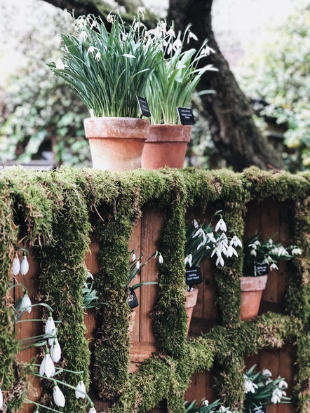 wedding planner paris organiser mariage ecolo responsable green