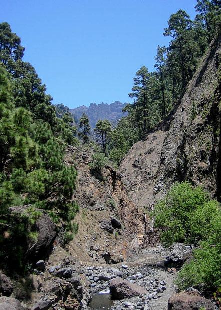 Es ist Juni, die Bäche und Flüsse führen nicht zu viel Wasser