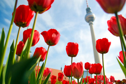 op things to do in Berlin - European Best Destinations - Copyright Claudio Divizia