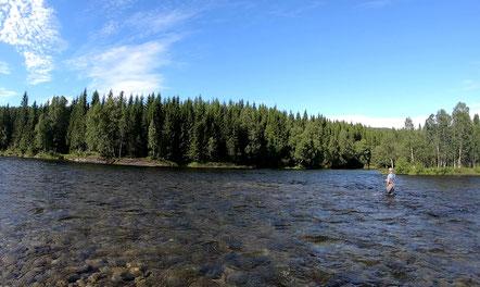 Lachs angeln Norwegen, in großen Flüssen, in Straumen in Meeresbuchten mit Fliege und Blinker,