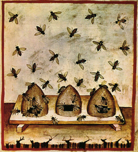 Bienenstöcke des 14. Jahrhunderts