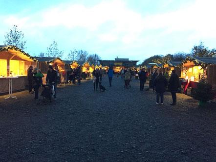 Hundeweihnachtsmarkt Gertrudenhof, Foto: Plück
