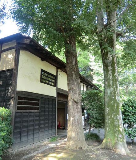 8月2日(2013) 武蔵国分寺跡資料館の入り口(長屋門)付近:資料館では、1/200スケールの武蔵国分寺跡推定復元模型などが展示されている(8月1日撮影)