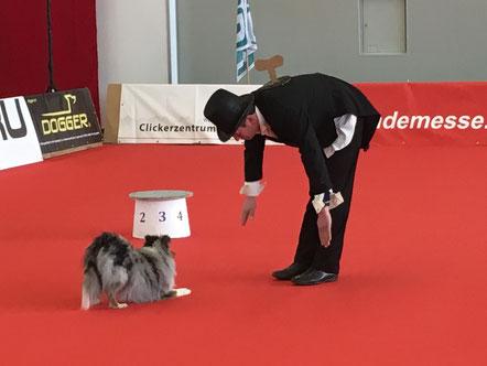 """""""Darf ich bitten?"""" An allen drei Tagen hiess es """"Let's Dance"""" im Rahmen des Dog-Dancing Turniers, einem der Publikumsmagneten der Messe."""