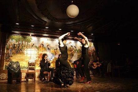 посмотреть фламенко в Мадриде Villa Rosa