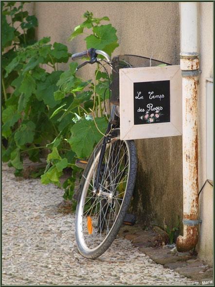 Bicyclette au détour d'une ruelle à Talmont-sur-Gironde,Charente-Maritime