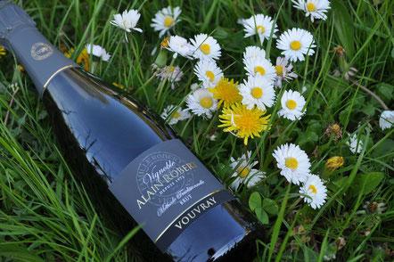 achat-bon-cadeau-bouteilles-de-vin-Vallée-de-la-Loire-Touraine-Vouvray-Rendez-Vous-dans-les-Vignes