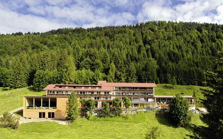 Bio-Berghotel Ifenblick in Balderschwang