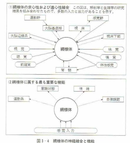 「感覚統合の理論と実践」より
