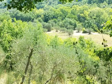cura natura Permakultur Toskana