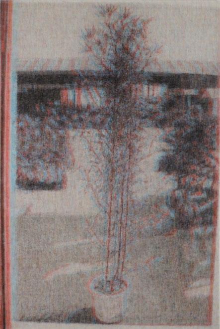 Sub Image(plant) 194x130.3cm, oil on canvas, 2011