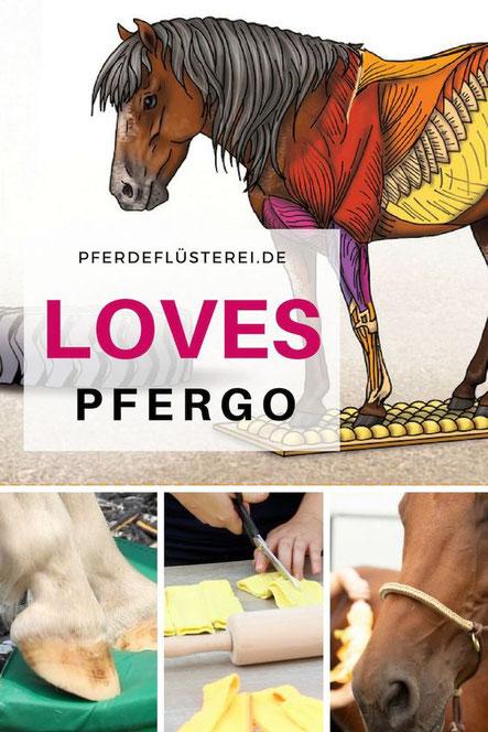 PFERGO - Pferdeergotherapie für ein sicheres und gut balanciertes Pferd