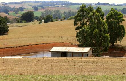 Rural dairy.
