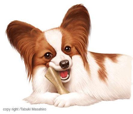 パピヨン犬のイラスト ペット フード