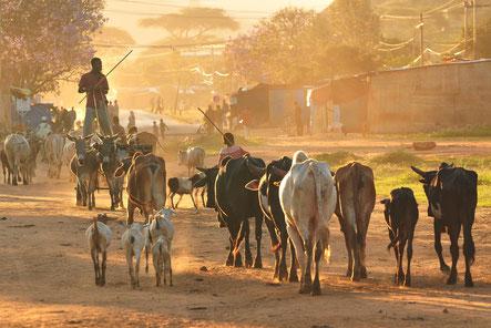 Städte und Dörfer in Afrika