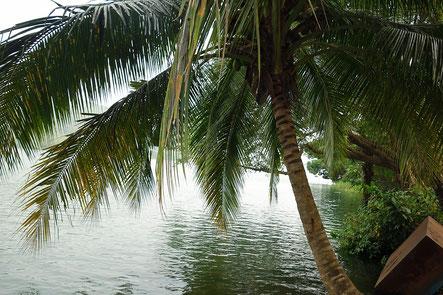 Volta River