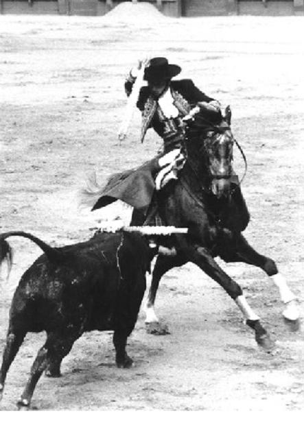 DON ALVARO DOMECQ ROMERO : 112 CORRIDAS, 332 OREILLES COUPEES, 82 RABOS REJONEADOR DU 13 SEPTEMBRE 1956 au 12 OCTOBRE 1985