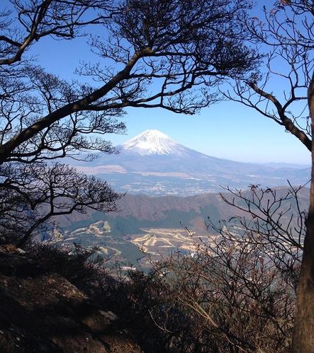 (箱根・神山頂上から望む富士山)